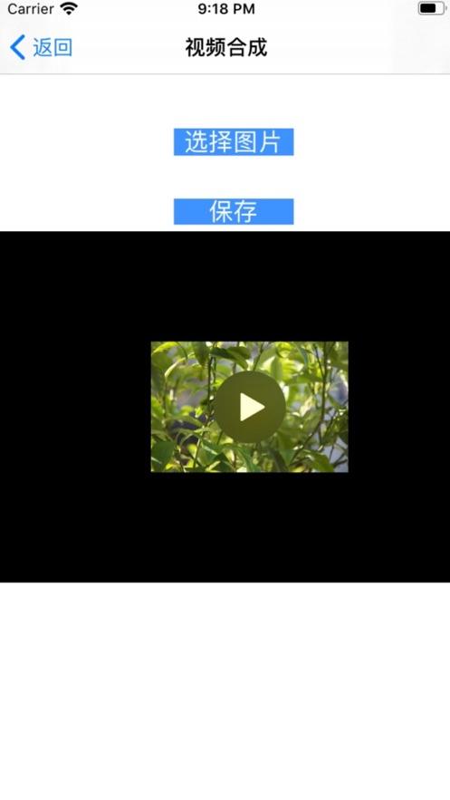 視頻水印專家(1)
