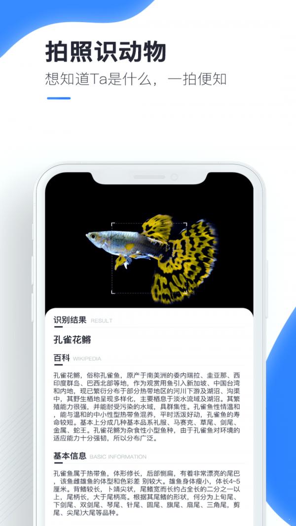 百科掃描王(4)