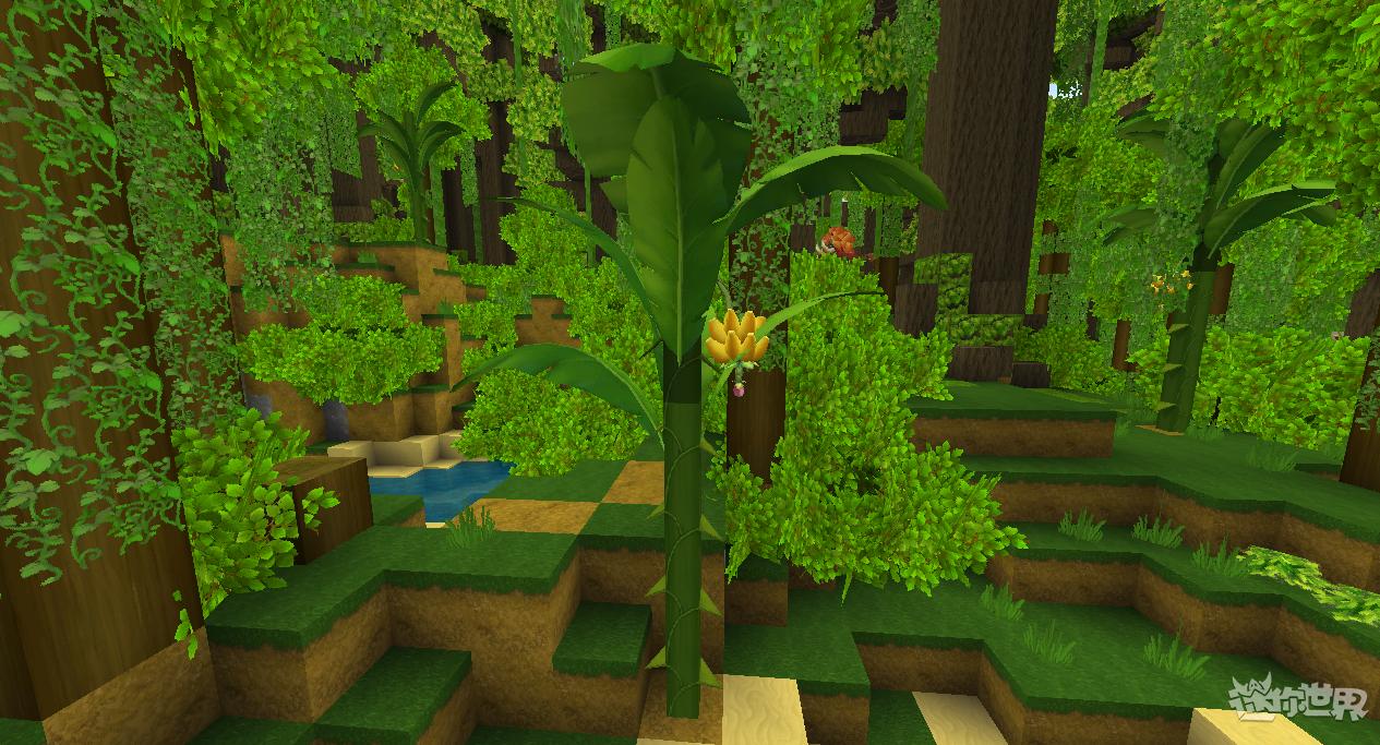 迷你世界雨林版本(2)