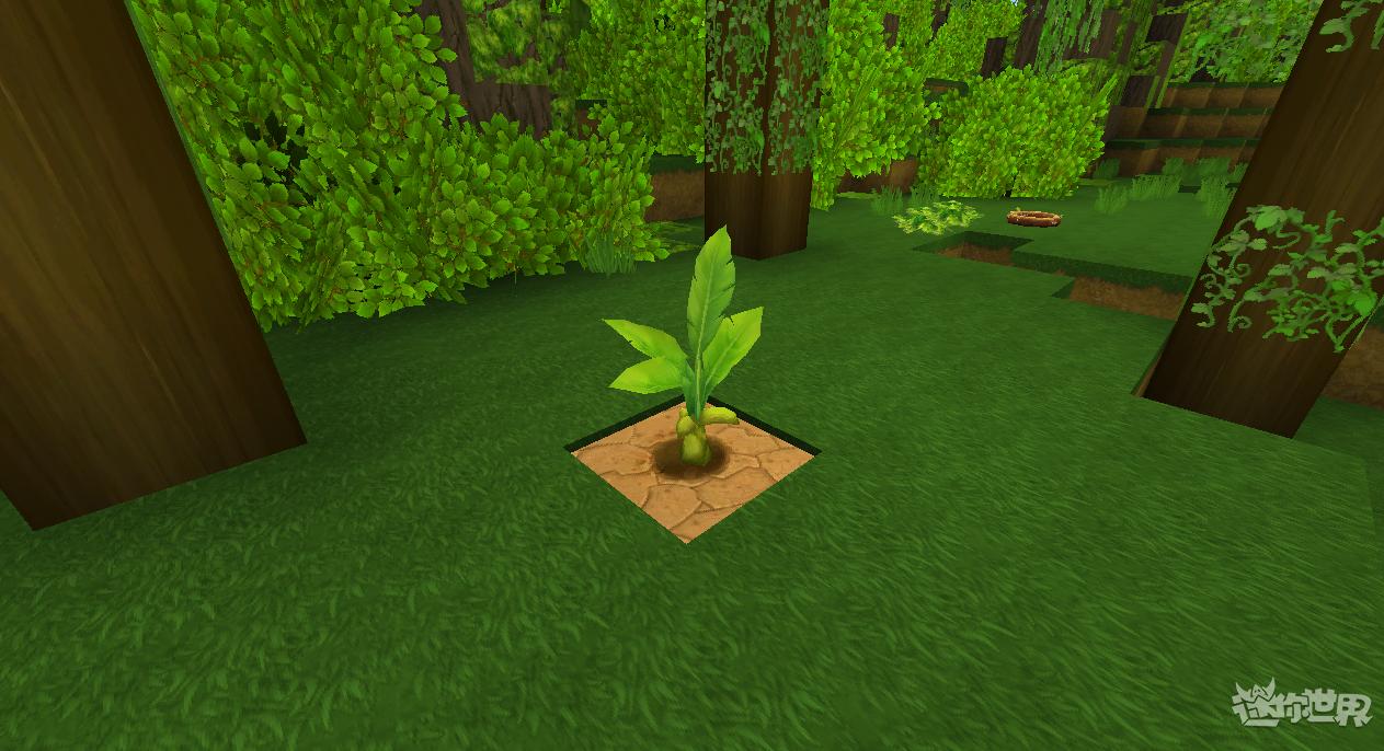 迷你世界雨林版本(1)