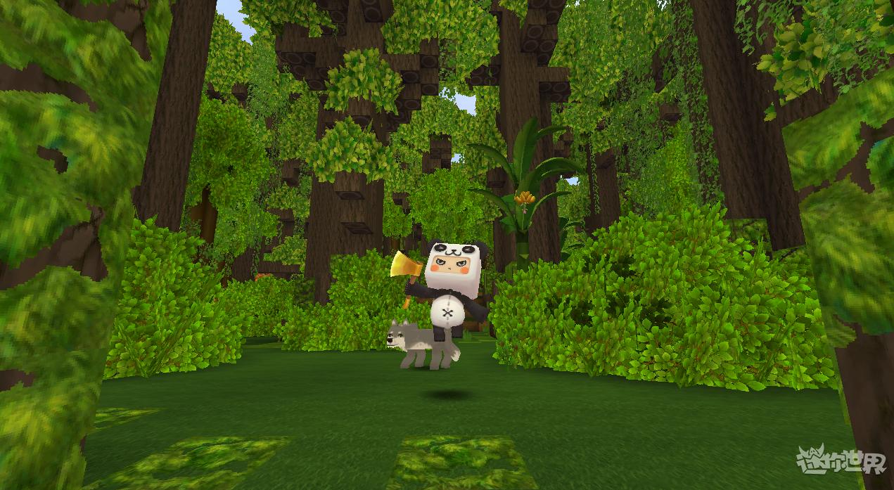 迷你世界雨林版本(5)