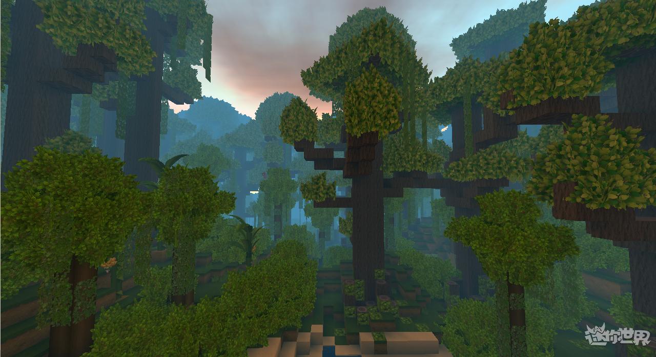 迷你世界雨林版本(6)