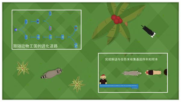 动物进化论(5)